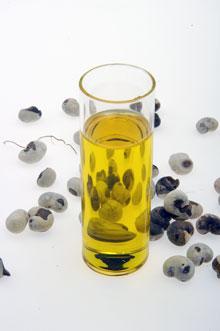 Les graines et l'huile de baobab biologique